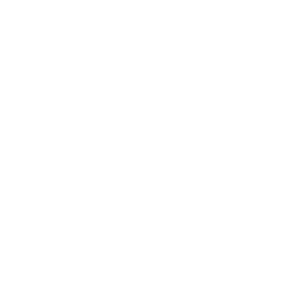 La Tortilla Factory Branding